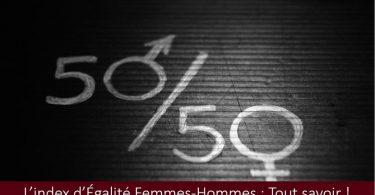 Index-Égalité-femmes-hommes-définition-utilité-contenu